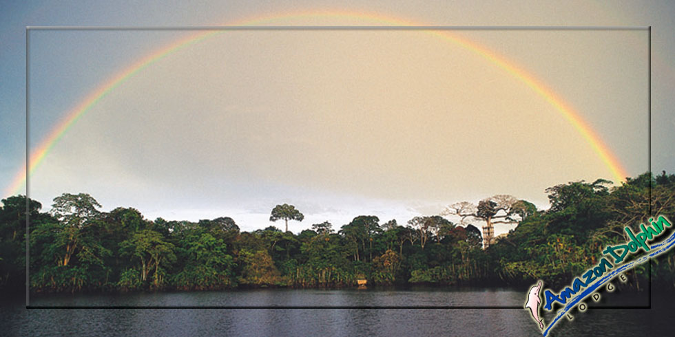Amazon Dolphin rainbow