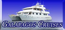 Read about Cruises and Different Classes.